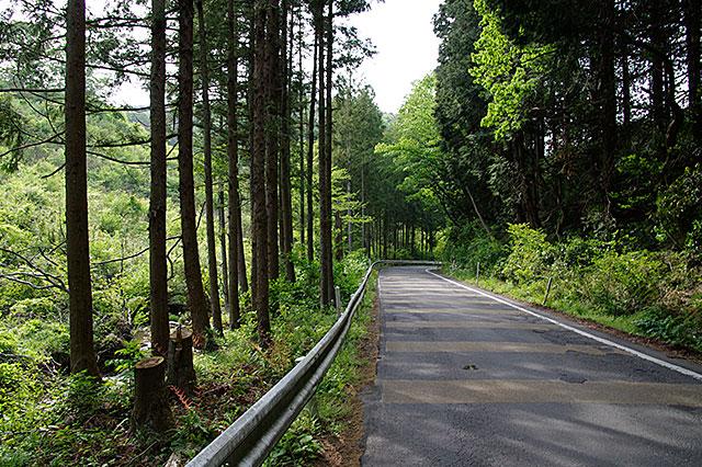 裏筑波登山口までの道