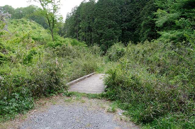 橋を渡り森の中へ