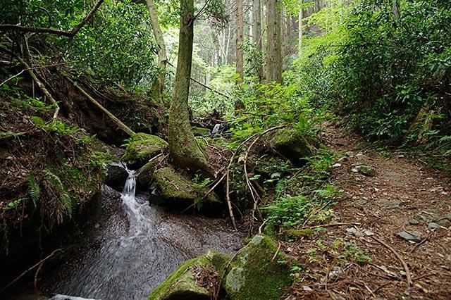 湯袋峠への下山ルート