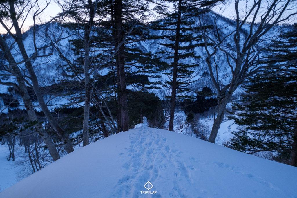 西俣ノ峰取り付きから登ってきた箇所
